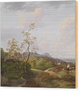 Wide Landscape With Shepherds Wood Print