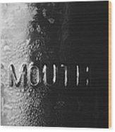 Widemouth Wood Print