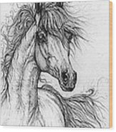 Wieza Wiatrow Polish Arabian Mare  Drawing 1  Wood Print