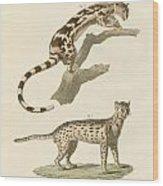 Wild Animals Wood Print