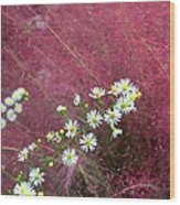 Wild Asters And Muhly Grass Wood Print