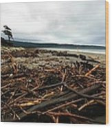 Wild Beach New Zealand Wood Print
