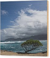 Wild Coast - Laie Point - North Shore - Hawaii Wood Print