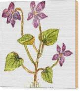 Wild Dog Violet Wood Print