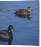 Wild Ducks Wood Print