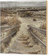 Wild Dunes Beach South Carolina Wood Print by Dustin K Ryan