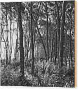 Wild Florida Wood Print by Thomas Leon