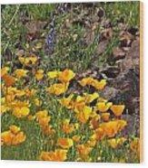 Wild Flower And Rocks Wood Print