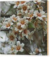 Wild Flowering Beauty Wood Print