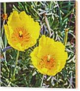 Wild Flowers 2 Wood Print
