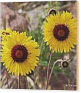 Wild Flowers Above The Rim Wood Print