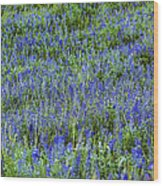 Wild Flowers Blanket Wood Print