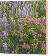 Wild Flowers Display Wood Print