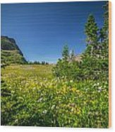 Wild Flowers Glacier National Paintedpark   Wood Print by Rich Franco