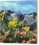 Wild Flowers In The Moutains Wood Print
