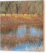 Wild Geese On The Farm Wood Print
