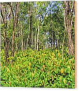 Wild Ginger And Ohia Trees Wood Print