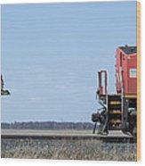 Train Chasing Canada Goose Wood Print