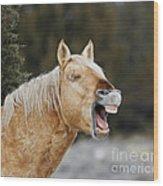 Wild Horse Chuckle Wood Print