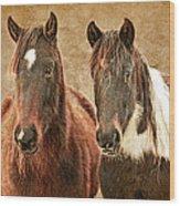Wild Horse Pair Wood Print