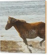 Wild Horse Running Through Water Wood Print