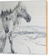 Wild Horses Drawing Wood Print