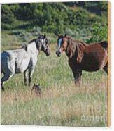 Wild Horses In Medora Wood Print