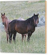 Wild Horses In The Badlands Wood Print