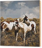 Wild Horses Mother And Child Wood Print