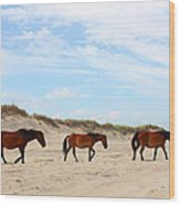 Wild Horses Of Corolla - Outer Banks Obx Wood Print