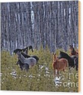 Wild Horses Of The Ghost Forest Wood Print
