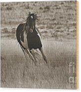Wild Horses-sepia-signed-#7288 Wood Print