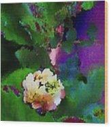 Wild Jasmine Wood Print