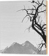 Wild Kingdom Wood Print