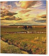 Wild Lands Of Nevada  Wood Print