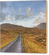 Wild Landscape Of Connemara Ireland Wood Print