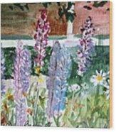 Wild Lupine In Barton Vermont Wood Print