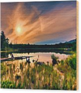 Wild Maine Woods In Baxter State Park Wood Print