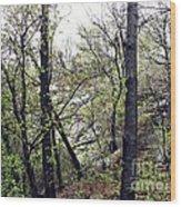 Wild Manhattan Wood Print