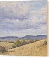 Wild Montana Skies Wood Print