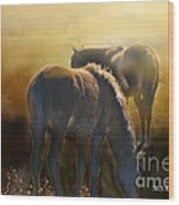 Wild Mustangs In The Mist Wood Print