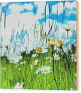 Wild Ones - Daisy Meadow Wood Print