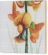 Wild Orchid Wood Print by Carolyn Weir