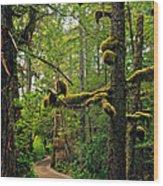 Wild Pacific Trail Wood Print