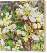 Wild Plum Flower Wood Print