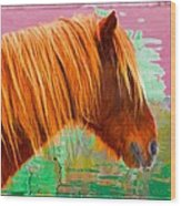 Wild Pony Abstract Wood Print