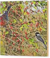 Wild Red Berrie Bush With Birds - Digital Paint Wood Print