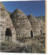 Wild Rose Charcoal Kilns Death Valley Img 4290 Wood Print