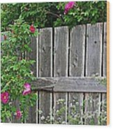 Wild Roses And Weathered Fence Wood Print