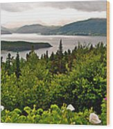 Wild Roses At Photographer's Point Overlooking Bonne Bay In Gros Morne Np-nl Wood Print